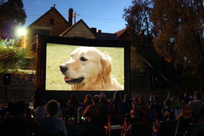 ParkView Outdoor Cinema