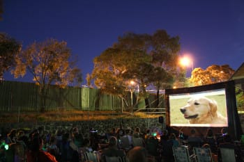 Outdoor movie events: more than just cinema in the park