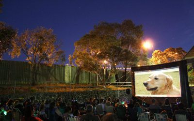 Outdoor Movie Events for Your Community:  Entertainment and beyond